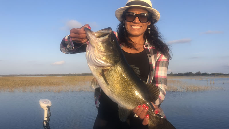 Amazing Kissimmee Bass Fishing